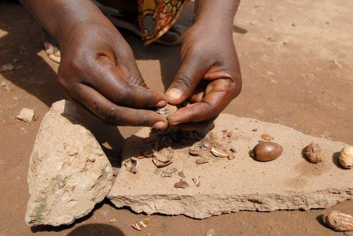Beneficios de la manteca de karité | Nueces